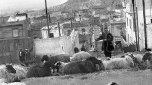 Kacikadika - Kolonaki,Atina