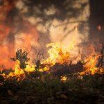 Zasto se u Grckoj krije da je izgorela cetvrtina najlepseg ostrva