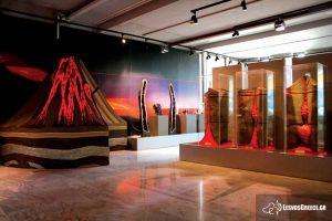 Prirodnjački muzej okamenjene šume na Lezbosu