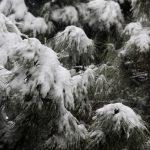 Vanredna situacija u Grckoj , sneg u centru Soluna , od ponedeljka i u Atini
