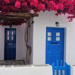 Kako se zove predivno cveće koje krasi grčku obalu