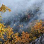 Požari 2021: Izgorele površine u Grčkoj uvećane za 450%!!