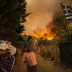 Požari na Mediteranu  i priča o piromanu koji je zapalio 450.000 drveta Mastike